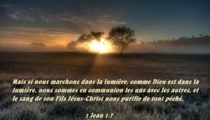 1 Jean 1:7