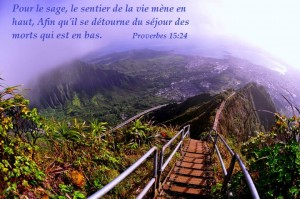 Proverbes 15:24