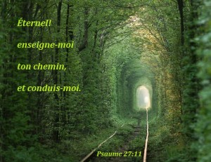 Psaume 27:11