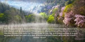 Psaume 116.4-9