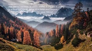 Psaume 117